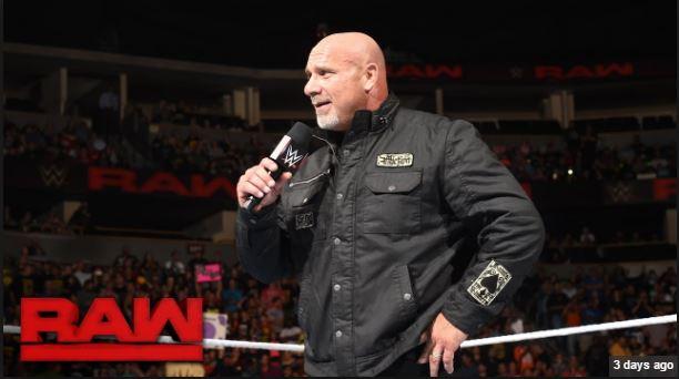 Goldberg RAW 16 2